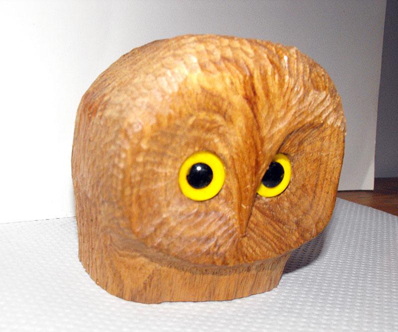 Pygmy_owl_DSCF0775